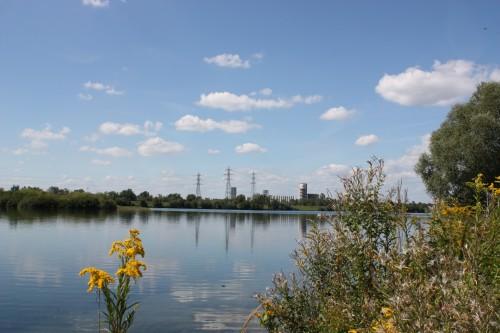 Großer See am Rhein